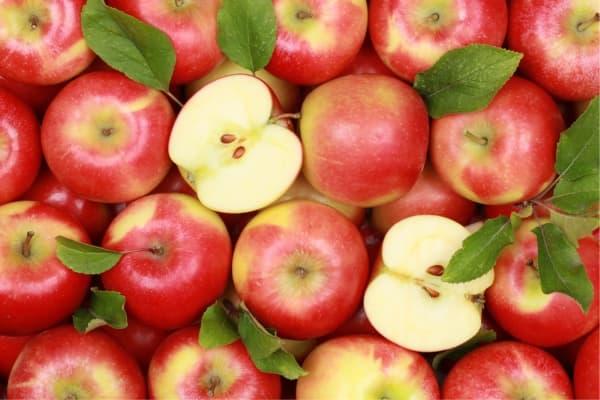 DİMES Özel Seri Rende Elma